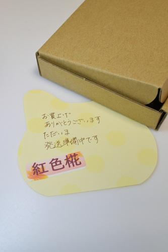 DSC_5983_00001.jpg